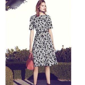 Maggy London Fit and Flare A Line Dress